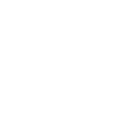 Cami Jones & Company footer logo